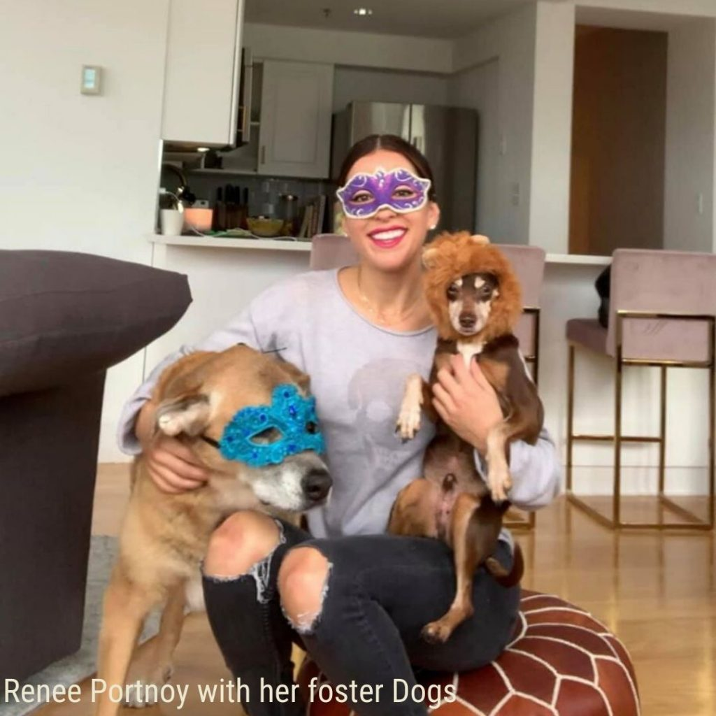 Renee Portnoy with her foster Dogs