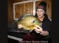 FishN More Murray Hebert biggest bluegill catch ever